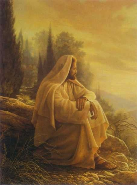 Perfection, is to strive to be perfect, like Jesus is. He is the only Perfect person there is other than the Father God.