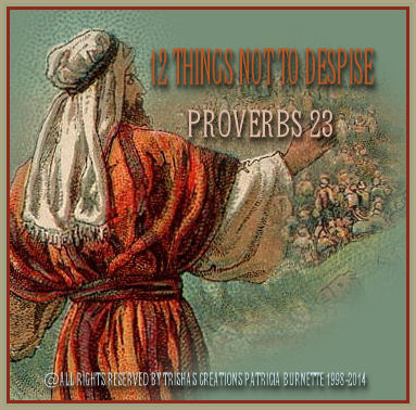 12 Things Not To Despise