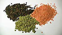 """For the meaning of """"lentil"""" in Indian English"""