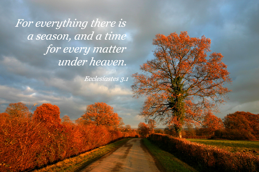 There is a time for everything, a season for every activity under heaven. God provides boundaries of time and seasons for us.