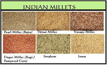 Millets are a group of highly variable small-seeded grasses, widely grown around the world as cereal crops or grains for both human food and fodder