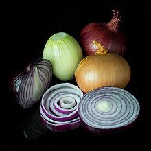 The onion (Allium cepa) (Latin 'cepa' = onion), also known as the bulb onion or common onion,