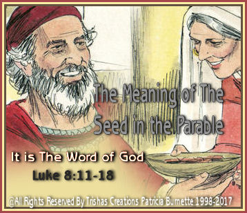 The Meaning of The Seed in the Parable