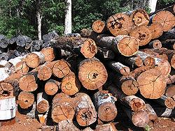 Lumber(American English)ortimber(British English, Hiberno-English, New Zealand English